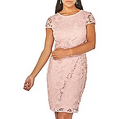 Dorothy Perkins - Blush lace pencil dress