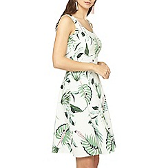 Dorothy Perkins - Tall ivory parrot fit and flare dress