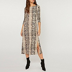 Dorothy Perkins - Tall snake print midi skater dress