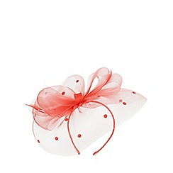 Dorothy Perkins - Coral spot bow fascinator