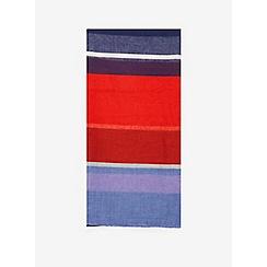 Dorothy Perkins - Multi coloured bright stripe scarf