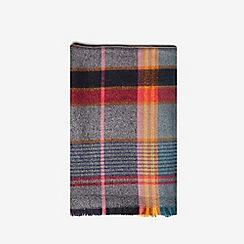 Dorothy Perkins - Multicolour pop check scarf