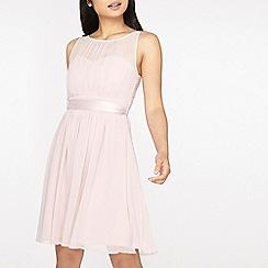 Dorothy Perkins - **showcase petite blush 'beth' prom dress