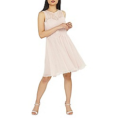 Dorothy Perkins - Showcase petite blush lola prom dress