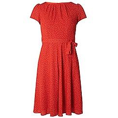 Dorothy Perkins - Billie & blossom red chiffon spotted dress
