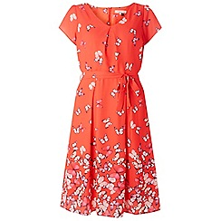 Dorothy Perkins - Billie & blossom red butterfly print dress