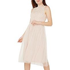 Dorothy Perkins - Showcase camille blush midi skater dress