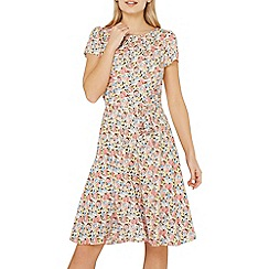 Dorothy Perkins - Billie & blossom pink ditsy print skater dress