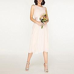 Dorothy Perkins - Showcase tall blush Bethany midi skater dress