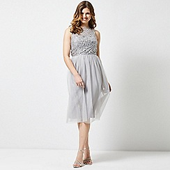 Dorothy Perkins - Showcase dove grey cordelia midi dress