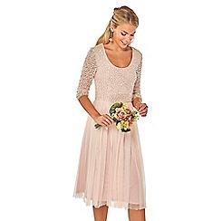 Dorothy Perkins - Showcase blush bijou skater dress