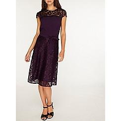 Dorothy Perkins - Billie & blossom tall purple lace dress