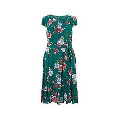Dorothy Perkins - Billie & blossom curve green floral print skater dress