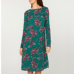 Dorothy Perkins - Tall green floral print shift dress