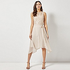 Dorothy Perkins - Billie and Blossom Nude Midi Skater Dress