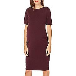 Dorothy Perkins - Maternity wine bodycon dress