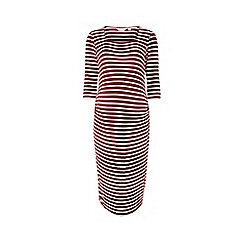 Dorothy Perkins - Maternity burgundy striped bodycon dress