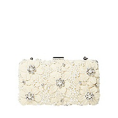 Dorothy Perkins - Ivory floral box clutch bag