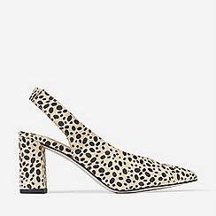 Dorothy Perkins - Multi Colour Cheetah Print Everley Court Shoes