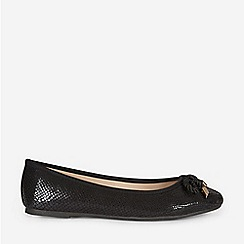 Dorothy Perkins - Black Priscilla Pumps