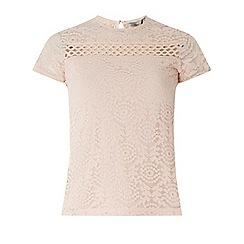 Dorothy Perkins - Petite blush lace t-shirt