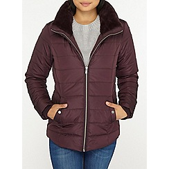 Dorothy Perkins - Petite berry faux fur collar puffer jacket