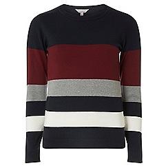 Dorothy Perkins - Petite burgundy striped jumper