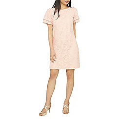 Dorothy Perkins - Petite blush lace shift dress