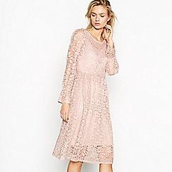 Vila - Pale pink lace 'Jacyln' boat neck long sleeve knee length dress