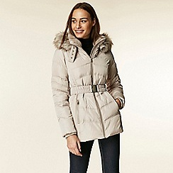 Wallis - Neutral short padded belted coat
