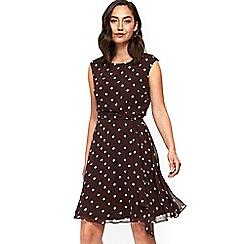 Wallis - Petite brown polka dot dress