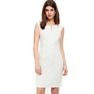 Wallis   Petite Ivory Lace Shift Dress by Wallis