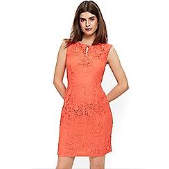 Wallis - Petite coral lace shift dress