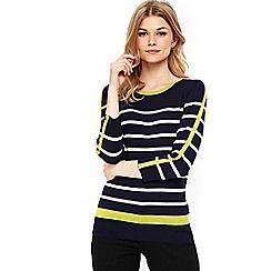 Wallis - Petite navy flash stripe jumper