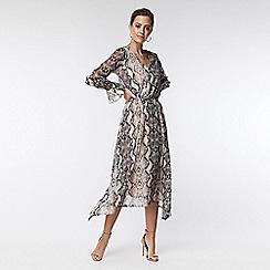 Wallis - Petite stone snake print midi fit and flare dress