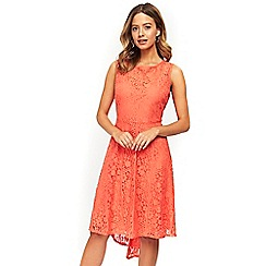 Wallis - Petite lace coral fit and flare dress