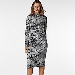Wallis - Petite grey snake print midi dress
