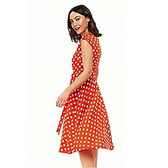 Wallis - Red midi spot fit and flare dress