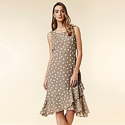 Wallis - Taupe Spot Fit and Flare Dress