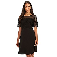 Wallis - Black lace mesh fit and flare dress