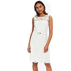 Wallis - Ivory belted lace fit and flare dress