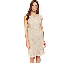 Wallis - Oyster lace shift dress