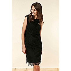 Wallis - Black Lace Shift Dress