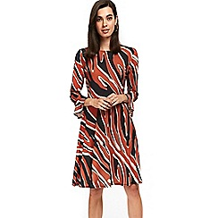 Wallis - Diagonal zebra print fit and flare dress