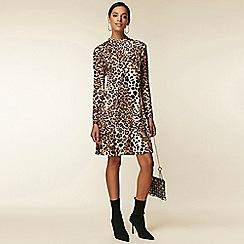 Wallis - Brown leopard print swing dress