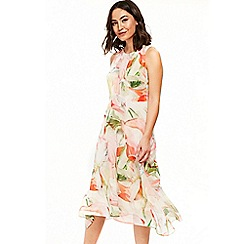Wallis - Blush spring floral hanky hem dress