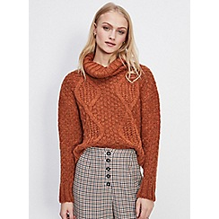 Miss Selfridge - Rust cable roll neck knitted jumper