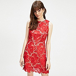 Miss Selfridge - Red lace a-line shift dress