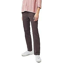 Dash - Lincoln mushroom classic petite jeans