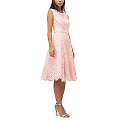 Precis - Petite lace & satin prom dress